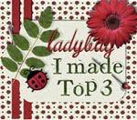 Top 3 at Ladybug!