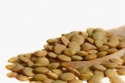 Revolusi Ilmiah - Kacang lentil.
