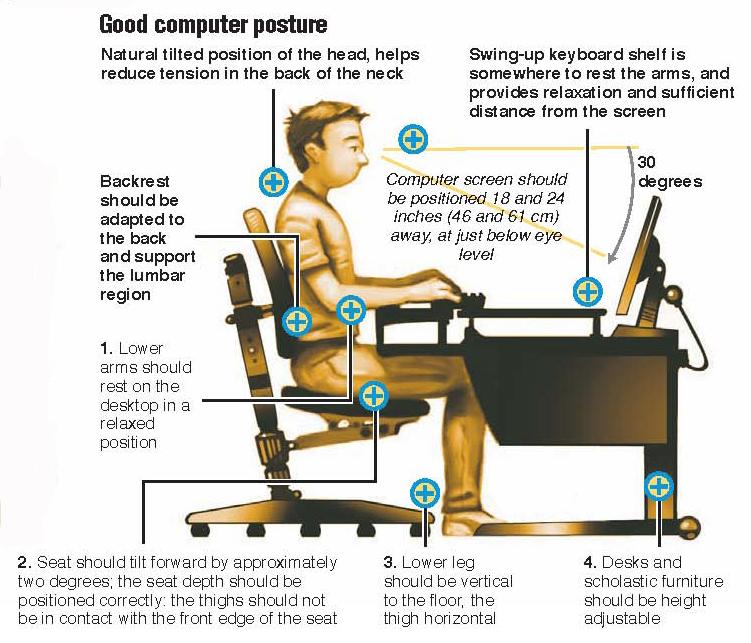 Widdel Online Back Ache Computer Neck Muscle Problems