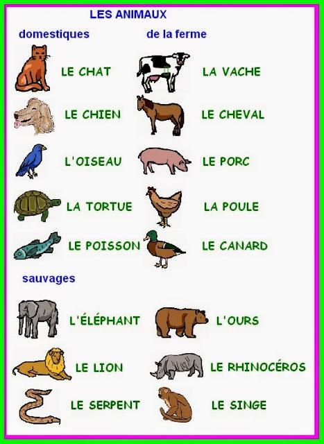 Souvent El blog de aprender francés bis: VOCABULAIRE - Les animaux CA71