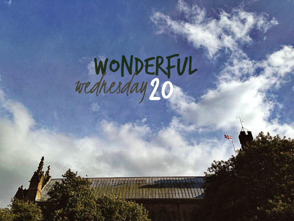 Wonderful Wednesday 20
