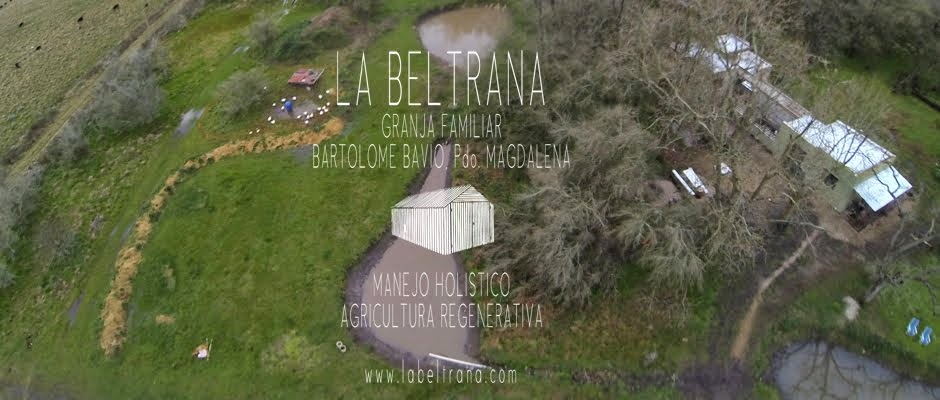 La Beltrana. Granja Familiar.
