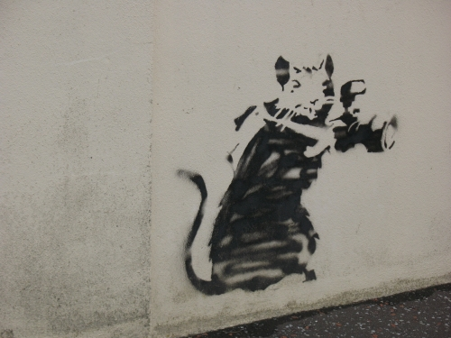 Banksy stencil art of rat with a camera