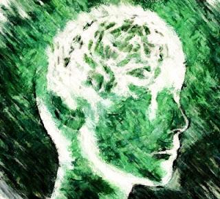 cervell poètic (Jaume Maria Ferreres)