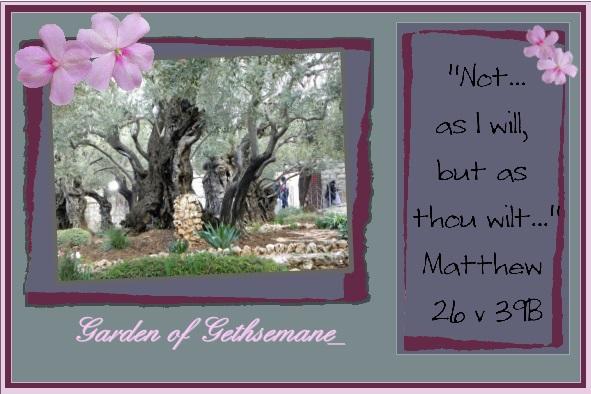 lo 1 - March 2016 - Garden of Gethsemane