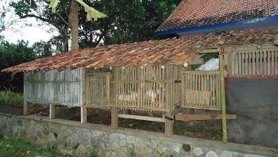 Contoh Kandang Kelinci dari Kayu dan Bambu
