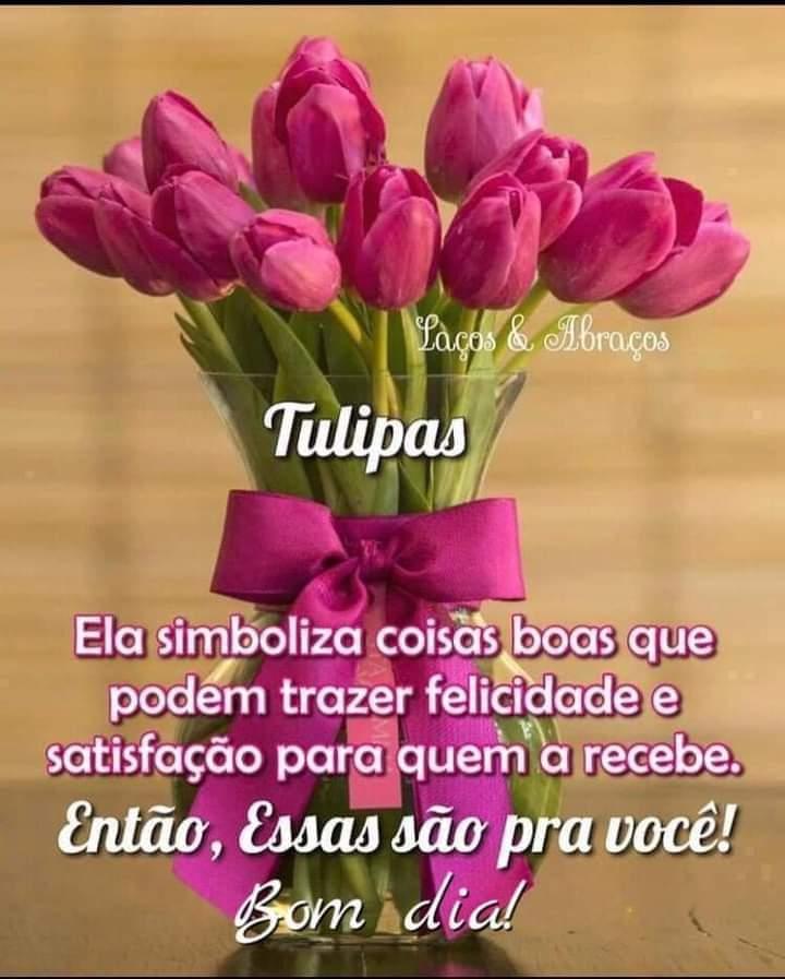 Tulipas forever
