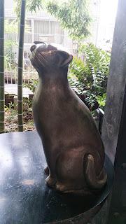 ミューザ川崎40番地ふく猫