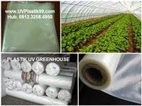 PLASTIK UV GREENHOUSE