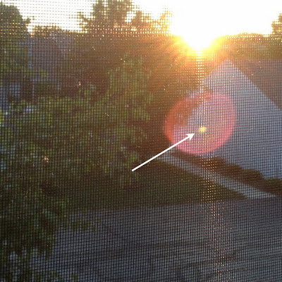 transit of venus lens flare