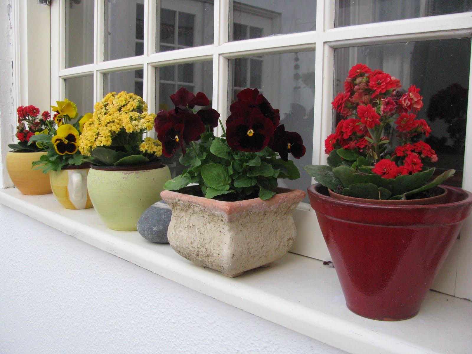 Jardineiras na decoração