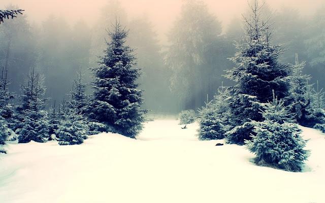 hình nền desktop mùa đông