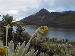 Laguna de los Verdes. Foto: Alejandro Cavanzzo