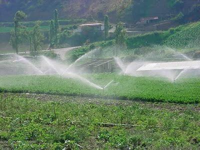 Sistemas de riego en campo abierto