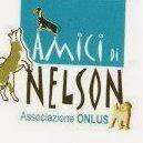 """Rifugio """"Amici di Nelson"""" ONLUS - (SA)"""