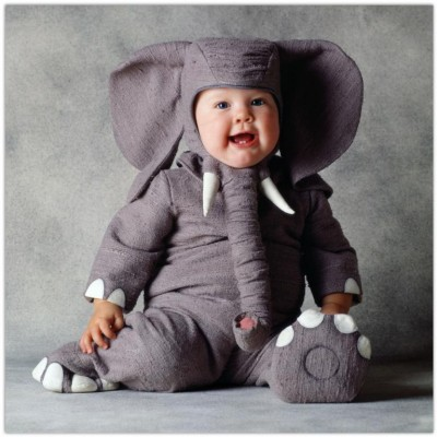 Funny child in elephant costume download freely