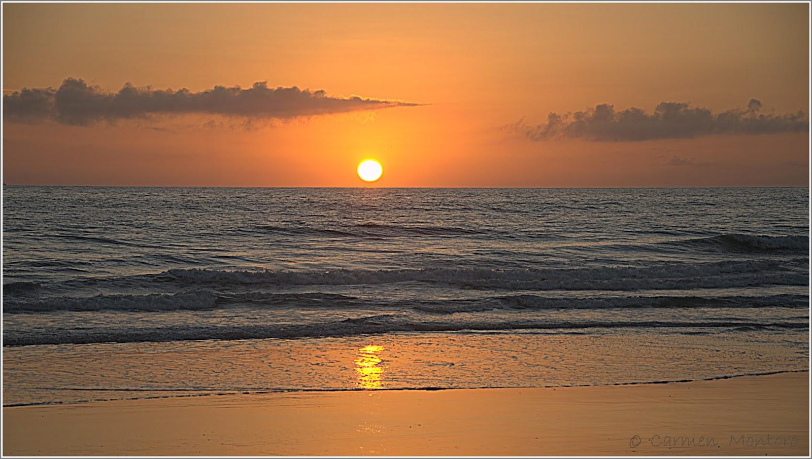 un sitio diferente: Playa de El Palmar. Vejer de la Frontera. Cádiz: el sitio...