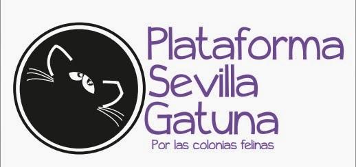 Plataforma Sevilla Gatuna por las colonias Felinas