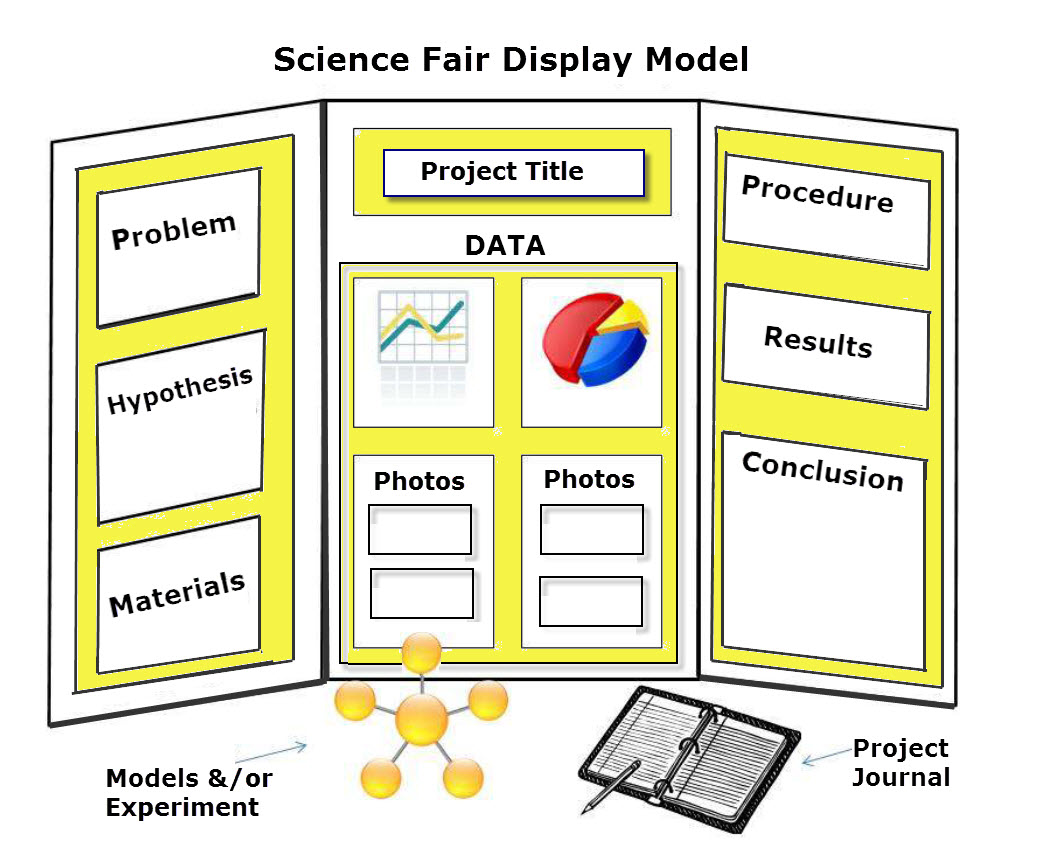 Science Fair Designing Display on How To Do A Great Science Fair Project And Board