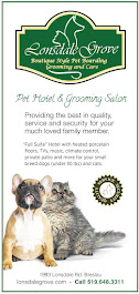 Boarding for small breed dogs and cats. Grooming for all!