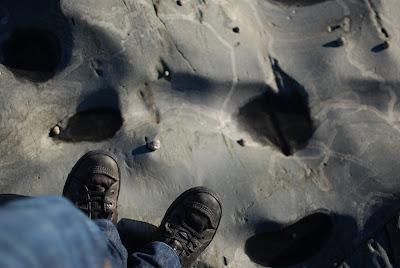Praia de Belinho 1