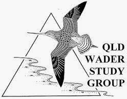 Queensland Wader Study Group