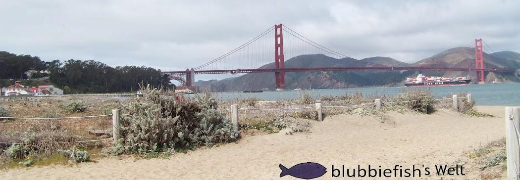 blubbiefish's world