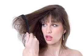 Tips Merawat Rambut Kering