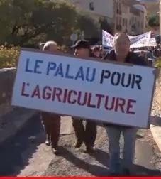 La manifestation du 8 décembre 2013 organisée par la coordination du PALAU
