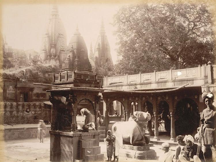 Kashi Vishwanath Temple Complex