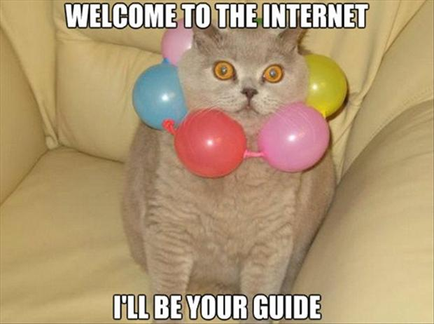 i ll be your guide to the internet