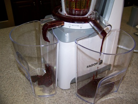 Win a Fagor Slow Juicer ~ Planet Weidknecht