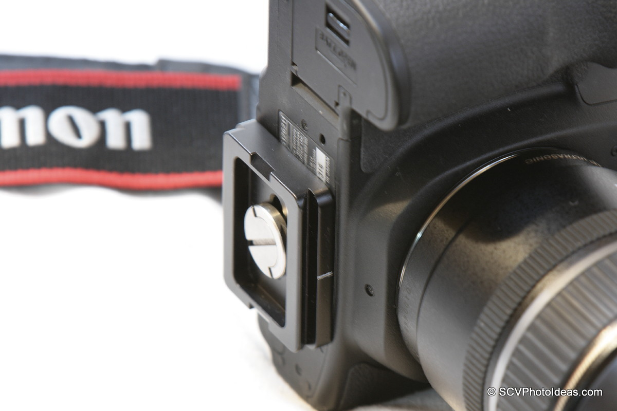 Canon EOS 50D w/ dovetail plate attached