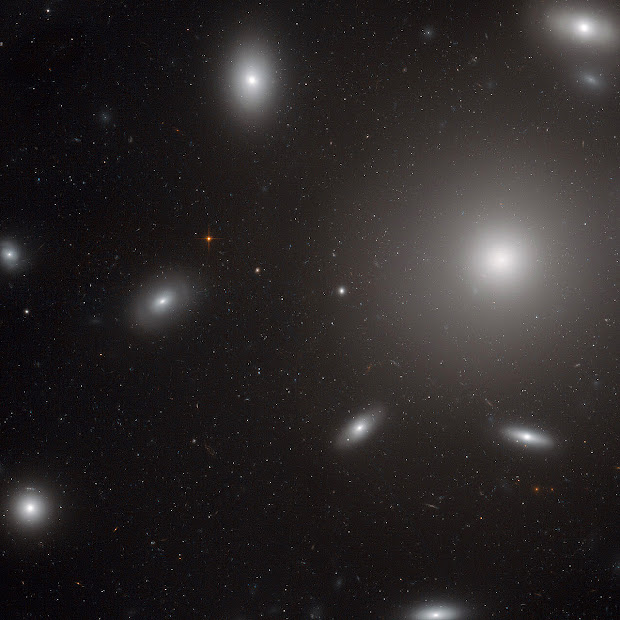 Giant Elliptical Galaxy NGC 4874 in the Coma Galaxy Cluster