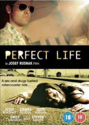 Watch Perfect Life 2010 BRRip Hollywood Movie Online | Perfect Life 2010 Hollywood Movie Poster