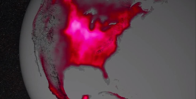 NASA scientists have discovered a new way to use satellites to measure what's occurring inside Earth's land plants at a cellular level. Image Credit: NASA's Goddard Space Flight Center
