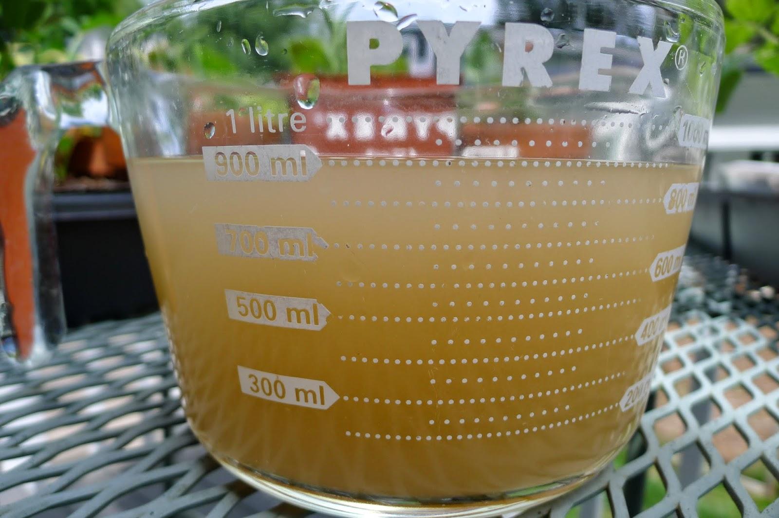 Fish Emulsion, fertilizing potatoes