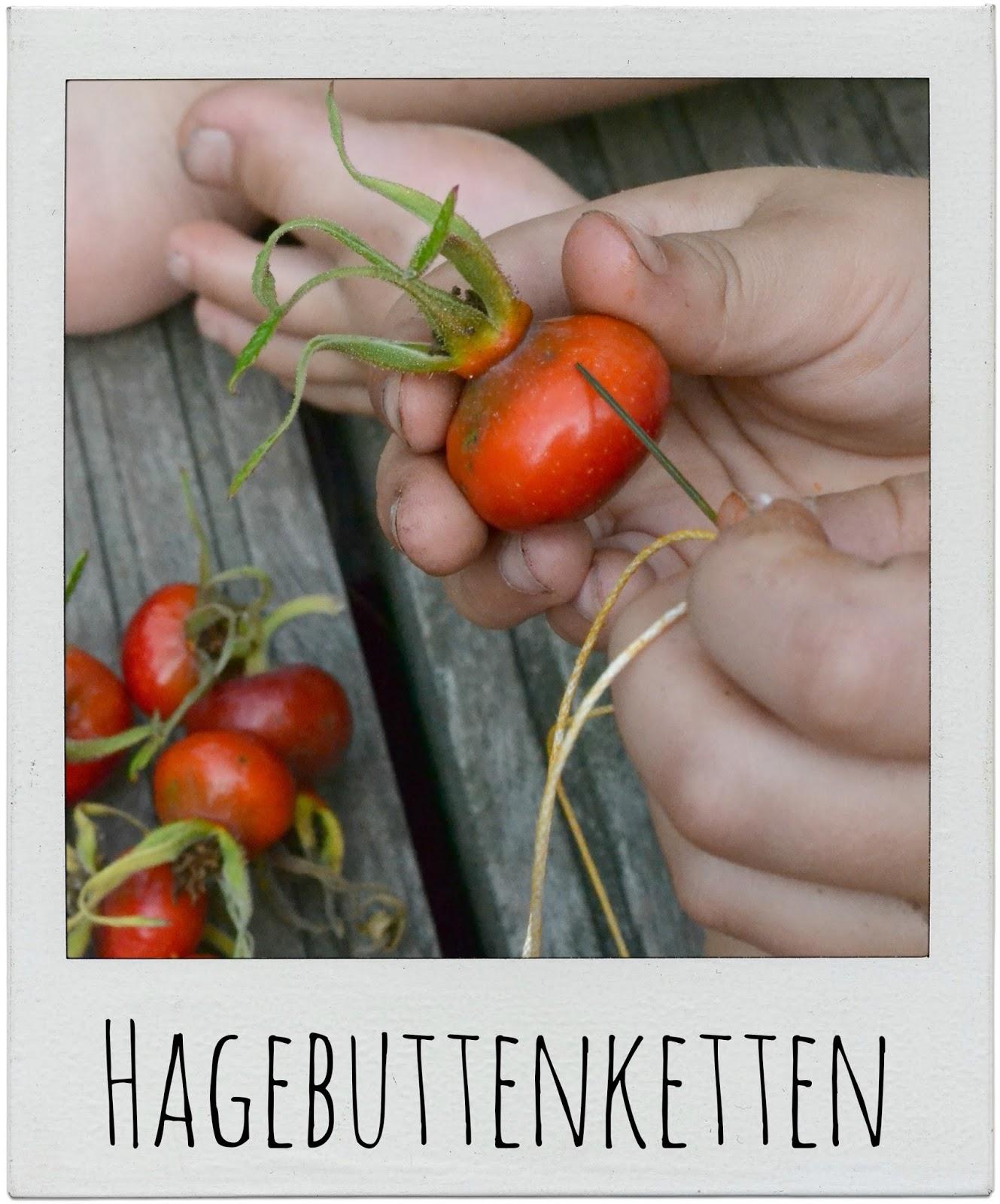 http://gemachtesundgedachtes.blogspot.de/2013/08/genesungshelfer-und-hagebuttenketten.html