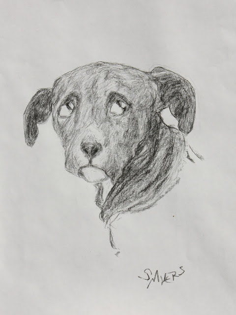 puppy, dog, black, cute, expectation, charcoal, art, arte, S. Myers, Sarah Myers, eyes, glance, young, animal