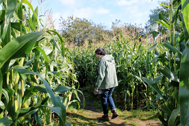 uk lifestyle blogger corn maze uk
