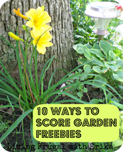 10 Ways to Score Garden Freebies by Living Frugal with Erika