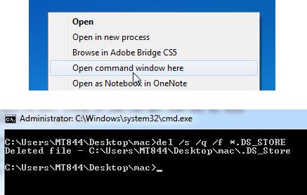 Windows - Delete all .DS_Store files