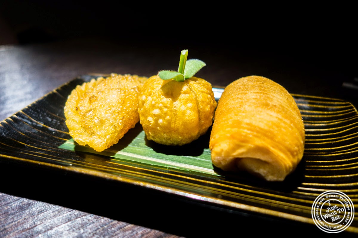image of fried dumpling platter at Hakkasan in NYC, NY