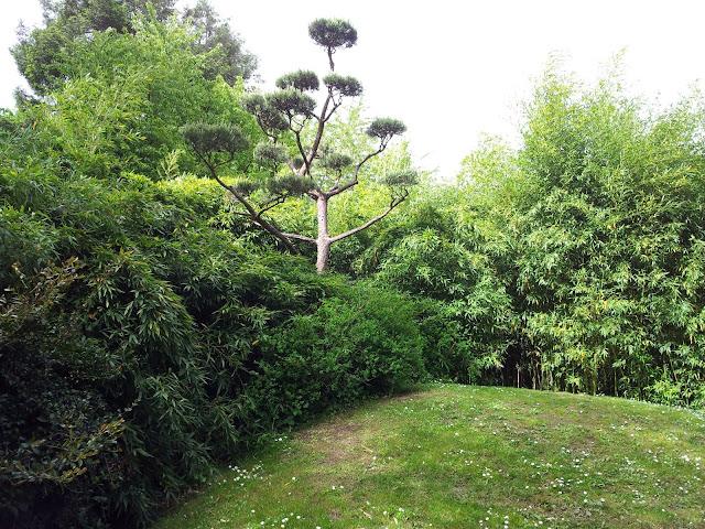 îles-versailles-nantes-mylittlequail-arbres