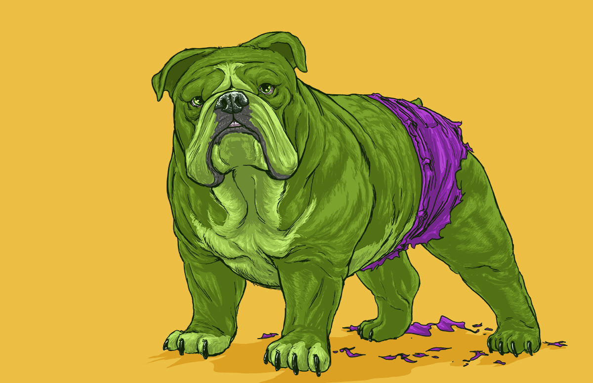 11-The-Hulk-Josh-Lynch-Illustrations-of-Dogs-with-Marvel-Comic-Alter-Egos-www-designstack-co