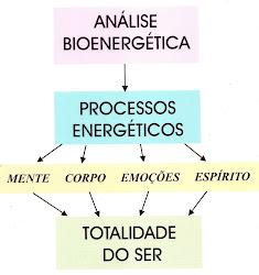 Análise Bioenergética