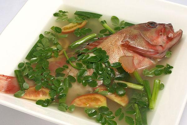 fish - Unsay Akong Gikaon Karon? - Anonymous Diary Blog