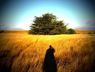30 fotografías con sombra - Shadow Photography