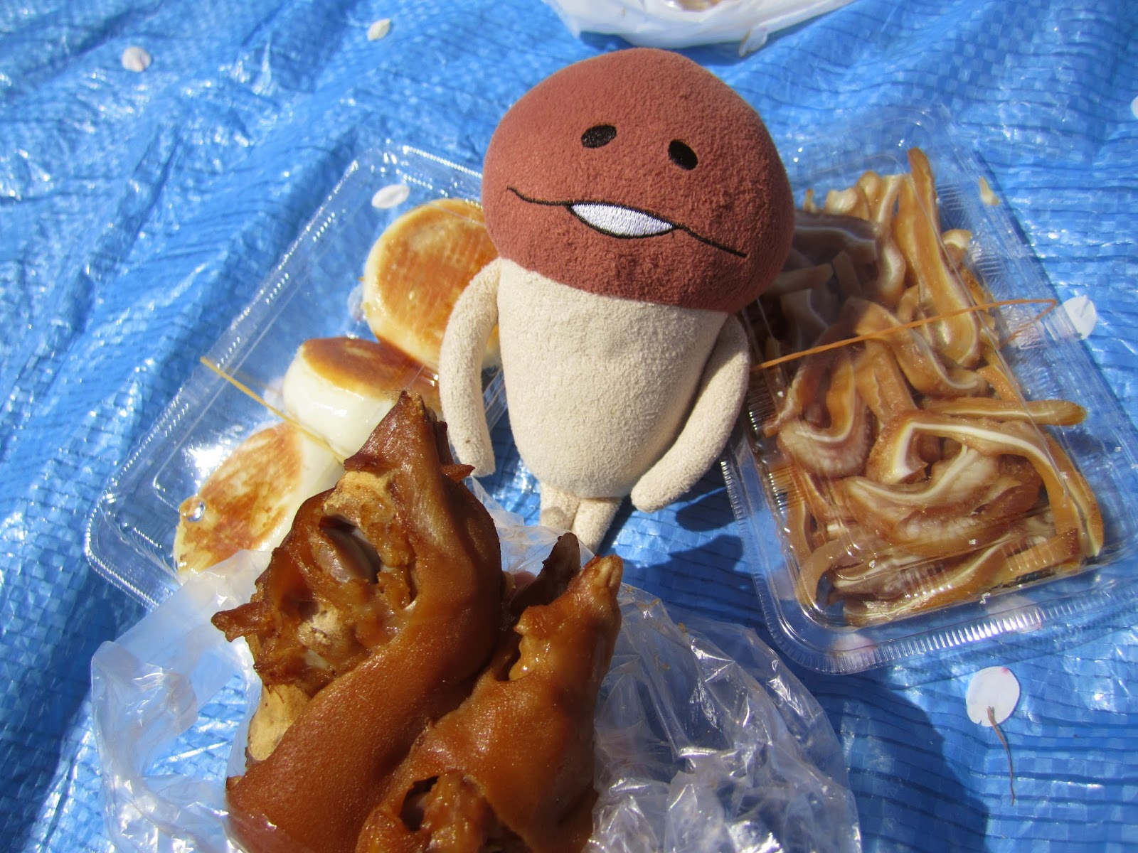 Towada Spring Festival Food 十和田市春まつり2015
