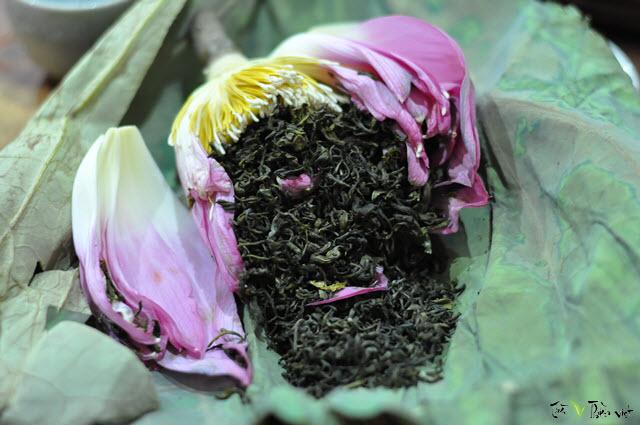 Kết quả hình ảnh cho trà ướp sen